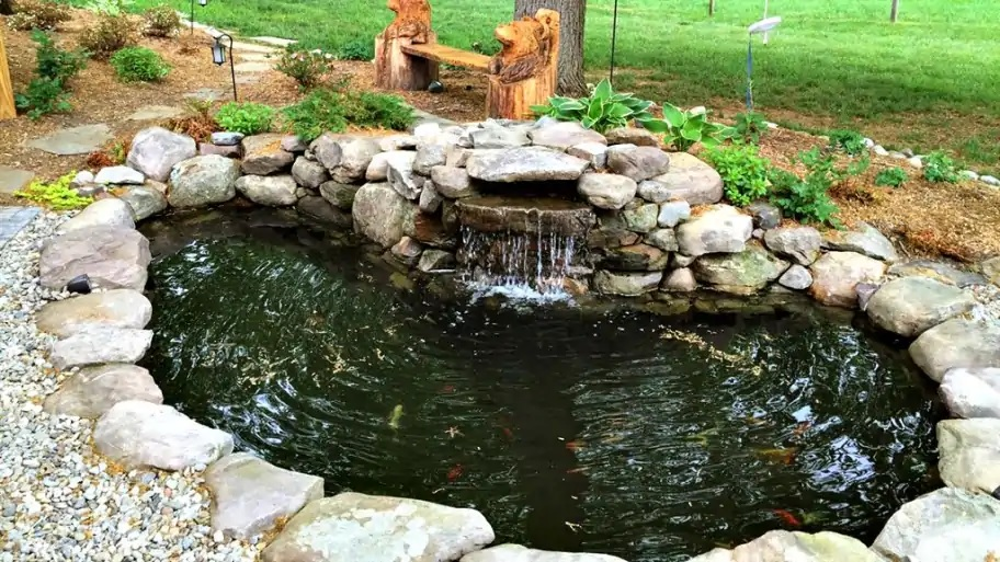 4 Ways to Care for Your Backyard Pond