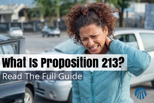Proposition 213 and What It Is All About